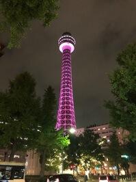 ピンク色にライトアップされた横浜マリンタワー